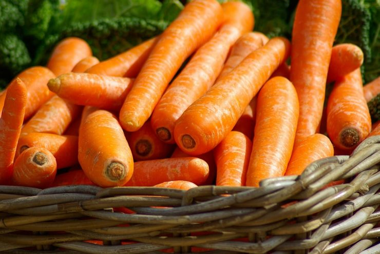 best food to fight against aging - health articles from Maria Trading UAE