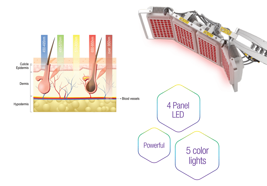 dermalight phototherapy system